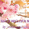 Le Lundi, je vois la vie en <b>rose</b> #5 