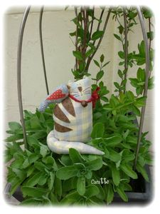 le chat country de ma fifille 75601937_p