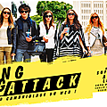 The Bling Ring, le plus grand cambriolage du web !