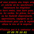 Fred Gilbot, Magicien