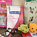 KittyBox d'Octobre // Tous au jardin