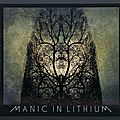 Pochette de disque - Cover Art - Manic In Lithium
