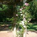 Flânerie au Parc Floral de la Source à Orléans…
