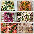 6 recettes de Ceviche à adopter