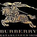 LE TEMPS BURBERRY