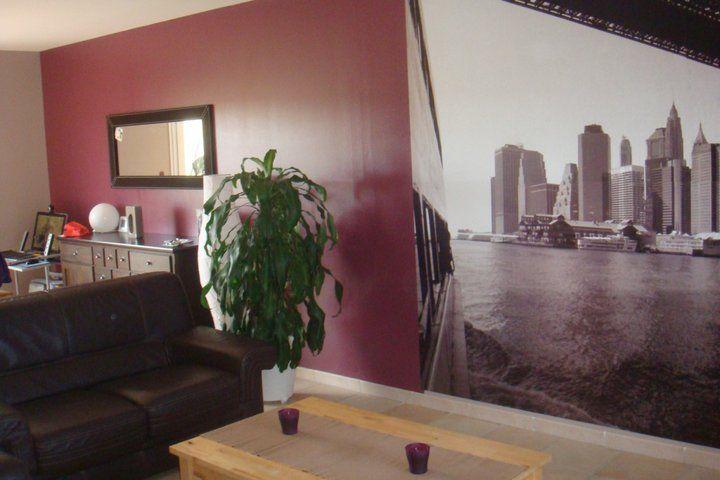 Id es peintures d coration forum vie pratique - Salon couleur bronze ...