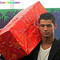 Cristiano Ronaldo agrees to save the <b>Mangroves</b> !