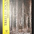 Objectif Arbres (Trees in focus) : 35 <b>photographes</b> inspirés - Anne Fontaine Foundation