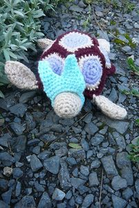 tortue r1