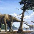 Tout les races de dinosaures de A à Z