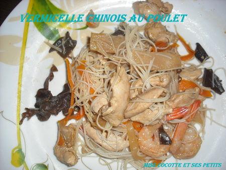 vermicelles_chinois_au_poulet_1