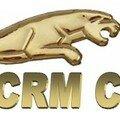 CRM CONSEILS