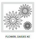 fl_daisies_2