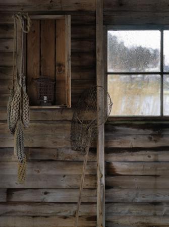 Fenêtre Lotta