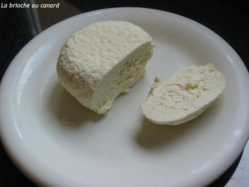 fromage frais maison recette