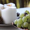 Les fruits givrés : la <b>recette</b> facile à l'effet wahou