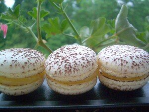 macarons_encore_017