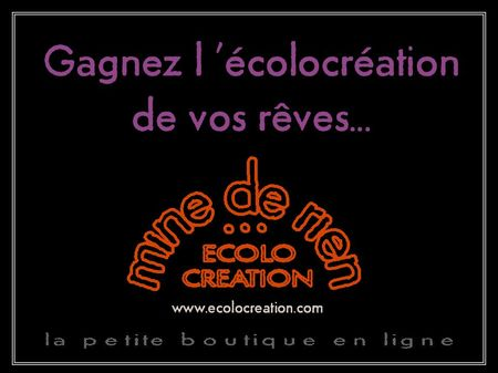 gagnez_ecolocreation_de_vos_reves