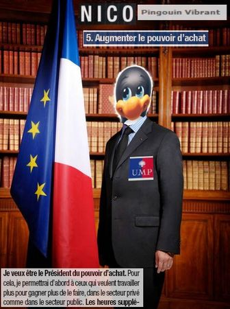 Nico_Pingouin
