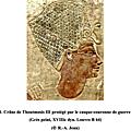 ANATOMIE HUMAINE - TÊTE ET COU - II