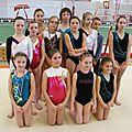 l'étoile Alençonnaise section gymnastique