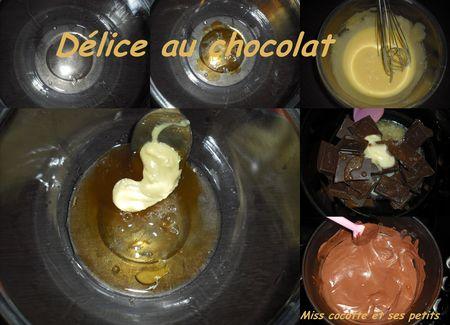 delice_au_chocolat