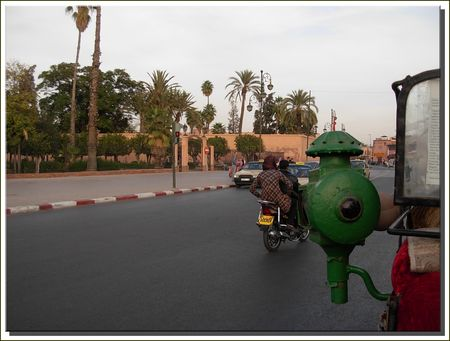 marrakech__461_