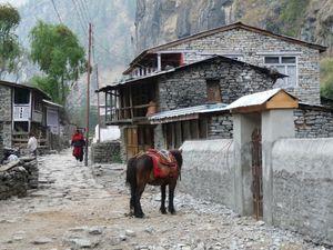 Trek Annapurna FZ28 - 0174