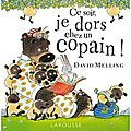 Ce soir je dors chez un copain, de David Melling, chez Larousse ****