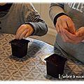 <b>Activité</b> enfant #6 : Mercredi graines de kiwi