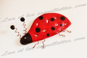 coccinelle modelage