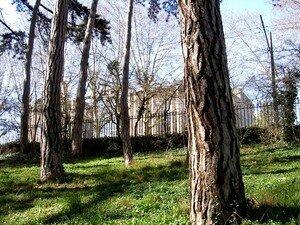 parc_022