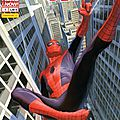 Panini Marvel : <b>Spiderman</b> V5