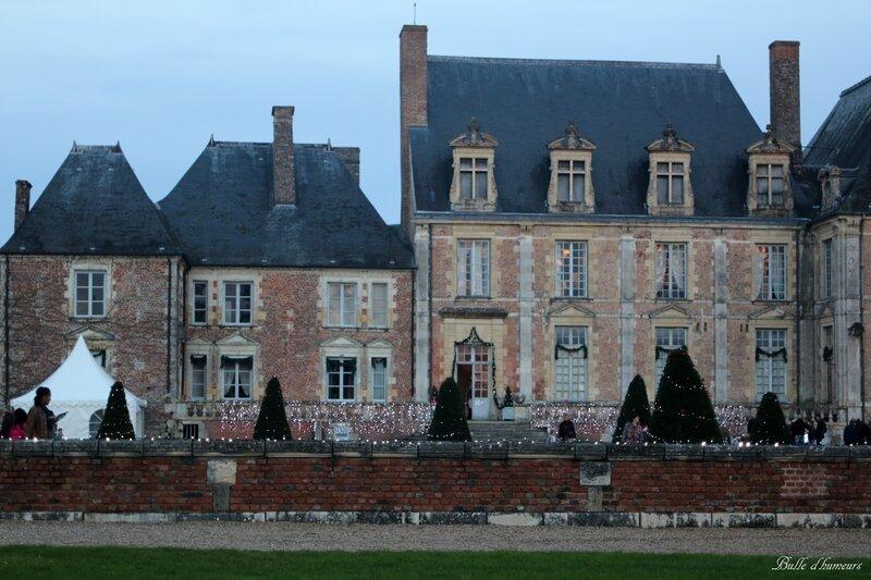 Château de la Ferté Saint Aubin (décembre 2015) #53