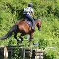 LOISIRS EQUITATION A LETTREE