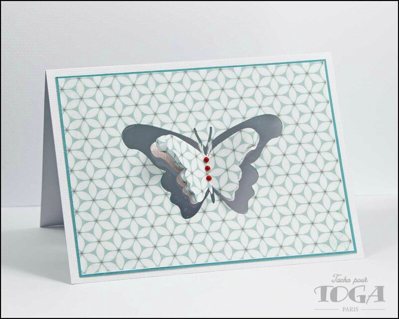 carte papillon jardin secret - DT Tacha 2p