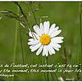 jouis de l'<b>instant</b> - enjoy the moment