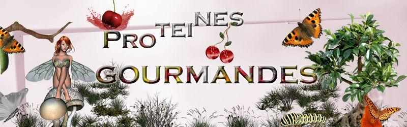 RECAP BANNIERE PROTEINES GOURMANDES & RESULTATS 52873993