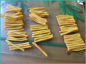 tuto cane orange (3)