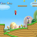 Test [New Super Mario <b>Bros</b> Wii]