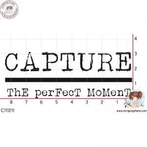 TAMPON_CAPTURE_THE_PERFECT_MOMENT_par_Laetitia67