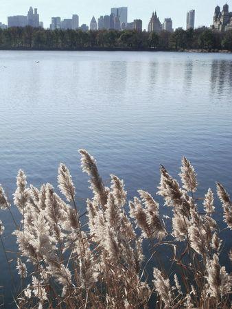 Reservoir_2