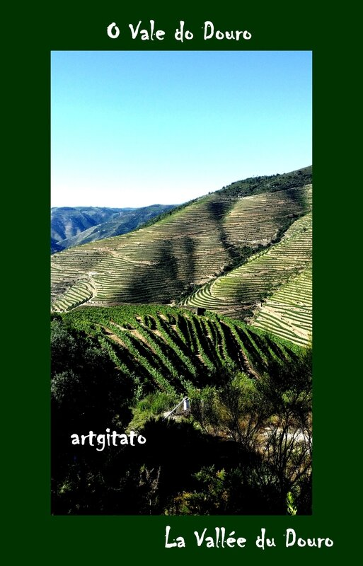 O Vale do Douro La Vallée du Douro Portugal Artgitato 3
