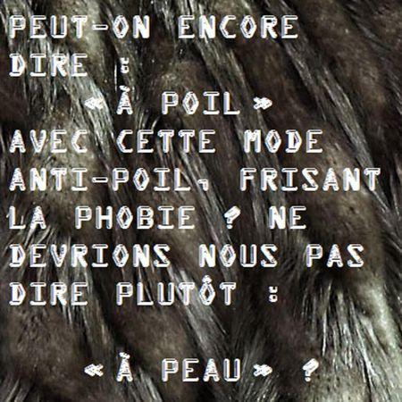 68_a_poil_ou_a_peau