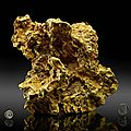 Famed Ausrox Gold Nugget – Regarded as the Third-Largest in Existence – Makes Its Return To Perot Museum