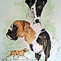 chiens de grande et petite vénerie
