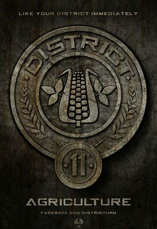 Hunger Games Affiche 11