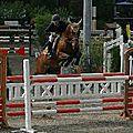 Les chevaux sont l'avenir à tous !!
