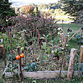 <b>Permaculture</b>