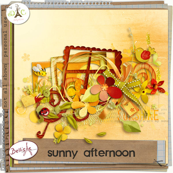 preview_SunnyAfternoon_bellisaedesigns